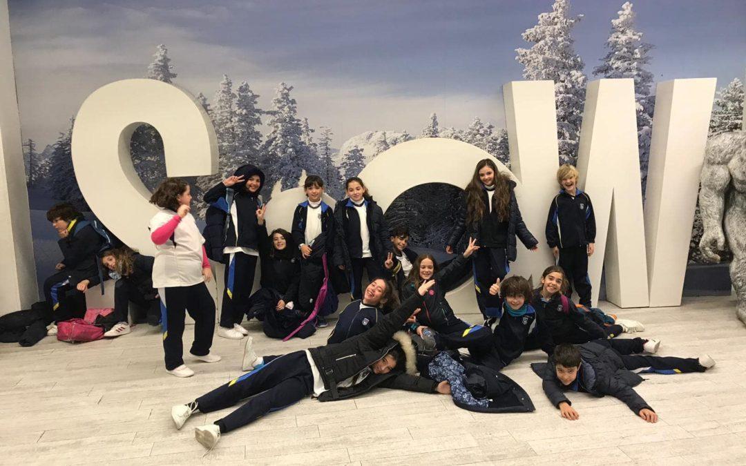 Excursión a Snow-Zone