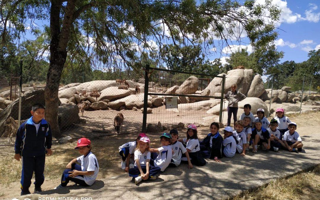 Excursión a la Reserva Natural de la Cañada Real