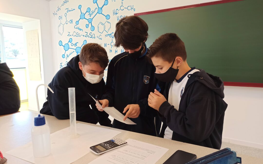 scoala de comert un laborator)